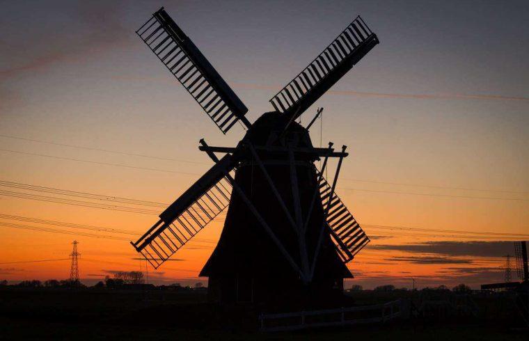 busy z kielc do holandii (2)